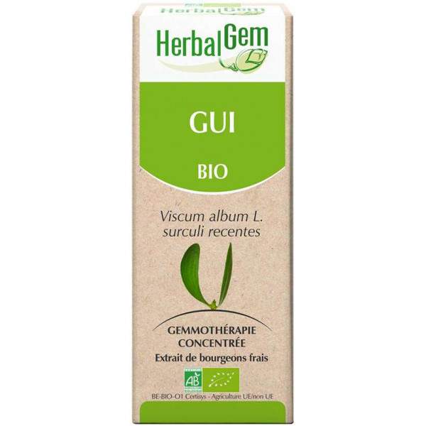 Gui bourgeon 50 ml  Bio - Herbalgem