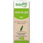 Myrtille bourgeon 50 ml Bio - Herbalgem