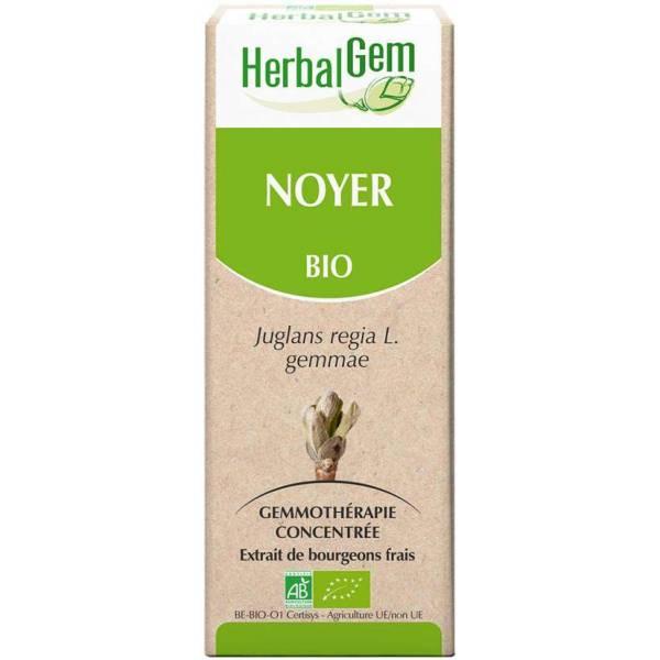 Noyer bourgeon Bio 15 ml - Herbalgem