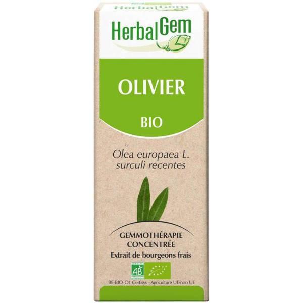 Olivier bourgeon 15 ml Bio - Herbalgem