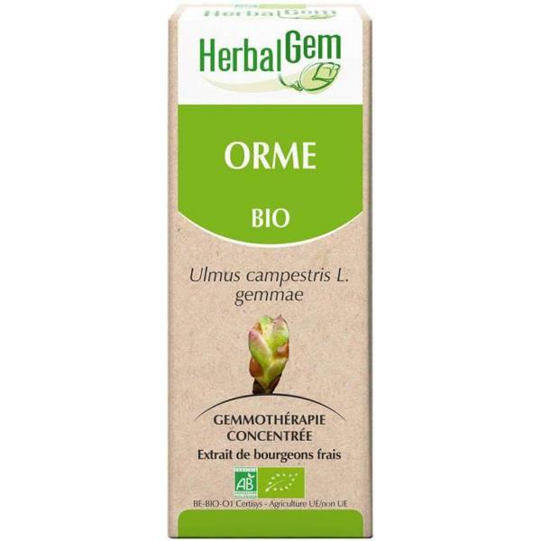 Orme bourgeon 50 ml Bio - Herbalgem