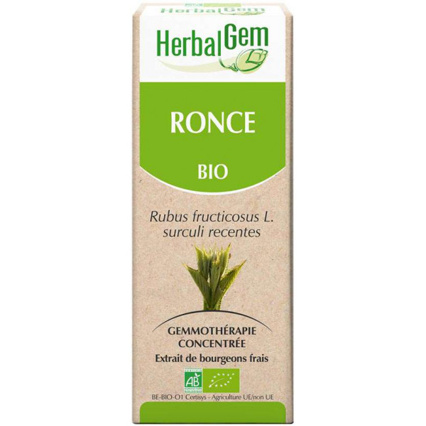 Ronce bourgeon 50 ml BIO - Hebalgem