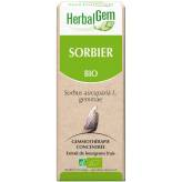 Sorbier Bourgeon 50 ml BIO - Herbalgem