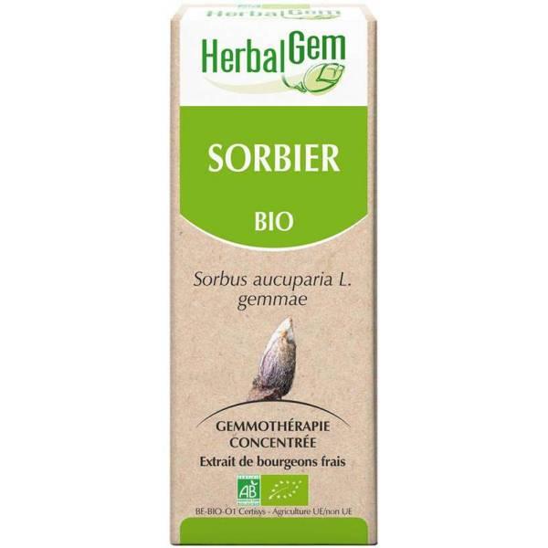 Sorbier Bourgeon 50 ml BIO - Herbalgem