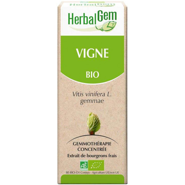 Vigne bourgeon 50 ml Bio - Herbalgem