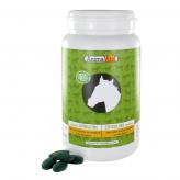 Spiruline pour cheval en comprimés 500 mg 1 kg - Animavital