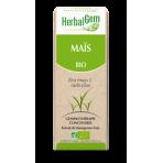 Maïs bourgeon 15 ml Bio - Herbalgem