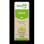 Seigle bourgeon 15 ml Bio - Herbalgem