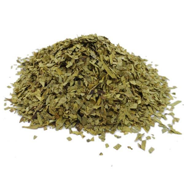 Séné Tinnevelly - Cassia angustifolia - Feuille coupée