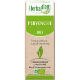 Pervenche bourgeon 50 ml Bio - Herbalgem