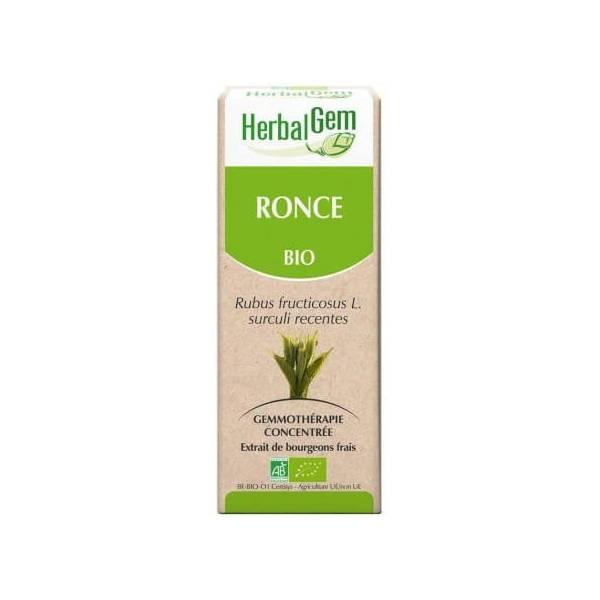 Ronce bourgeon Bio - Rubus fructicosus Macérat - 15 ml - Hebalgem