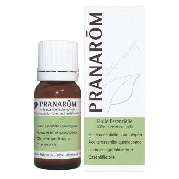 Mandravasarotra (Saro) 10 ml - Pranarôm