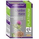 Chardon Marie Extrait standardisé